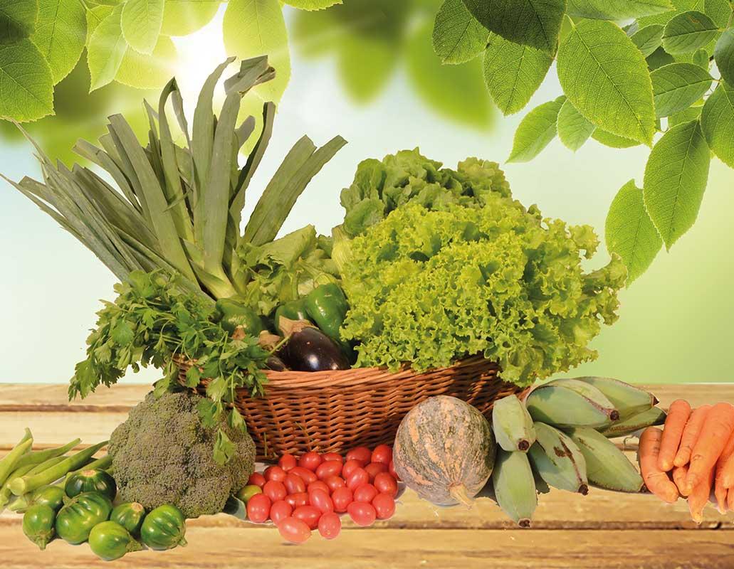 Assinatura-de-cestas-organicas